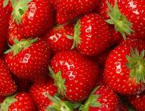 تعرف على فوائد فاكهة الفراولة للإنسان
