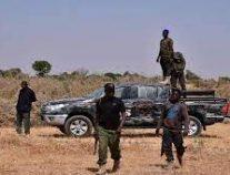 """مقتل 85 إرهابياً من عناصر """"بوكو حرام"""" في نيجيريا"""